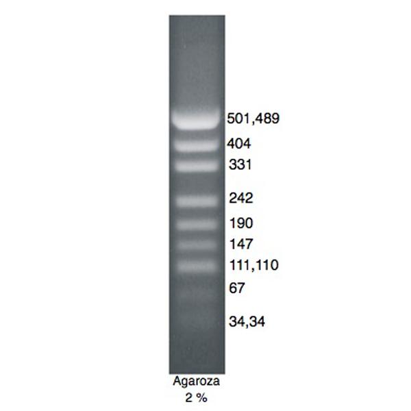 DNA Marker pUC/Msp I