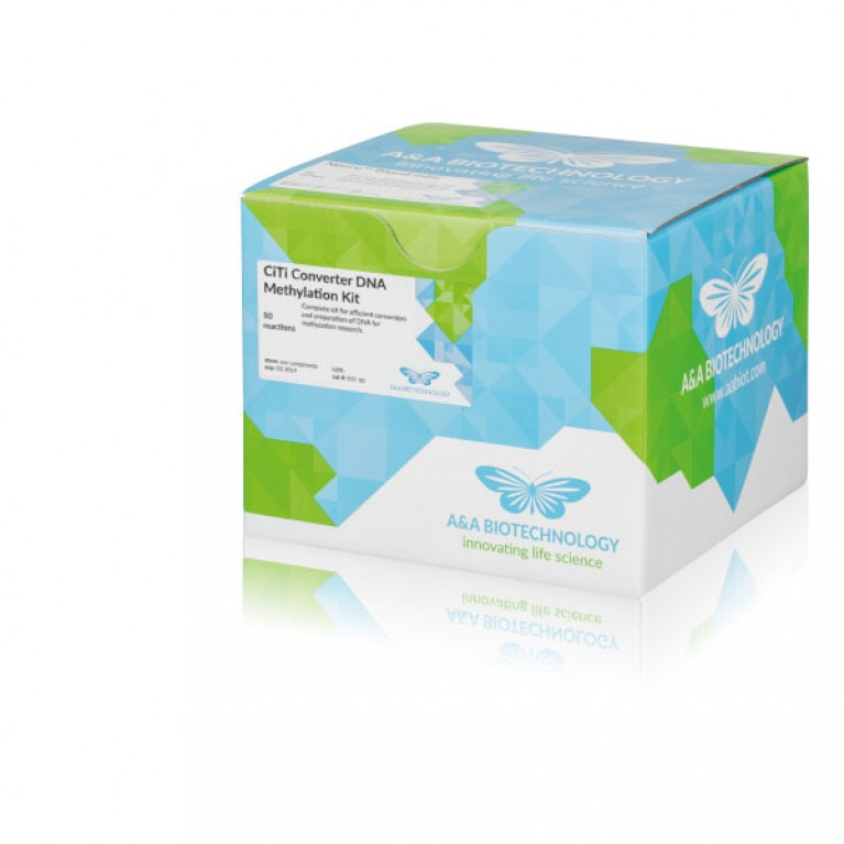 CiTi Converter DNA Methylation Kit
